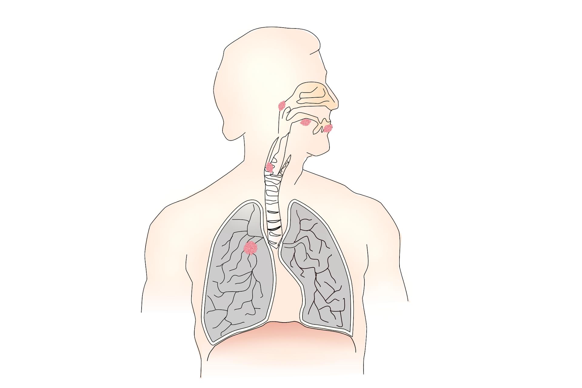 Higiene das vias aéreas superiores auxilia na redução dos riscos de infecções respiratórias